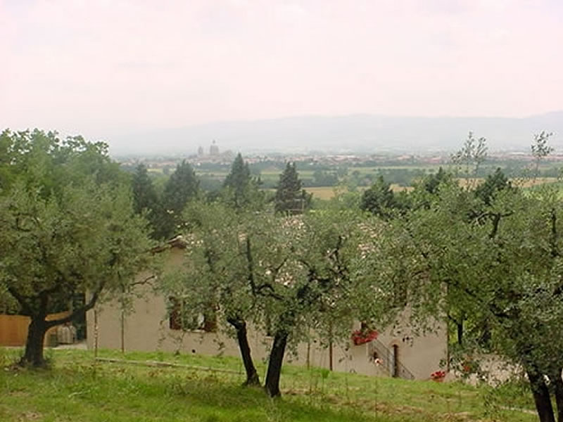 Produzione olio extra vergine di oliva la cantina si assisi for Soggiorno ad assisi